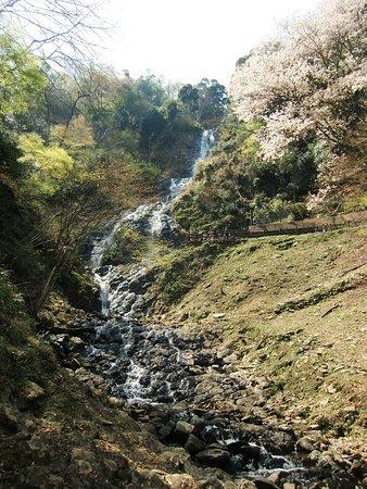 Asahi Taki Fall