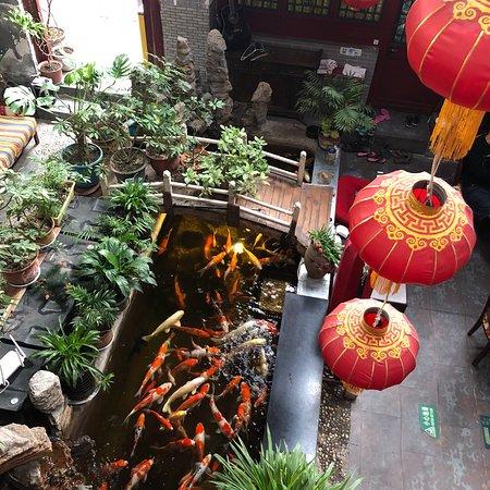 Red Lantern House : photo0.jpg
