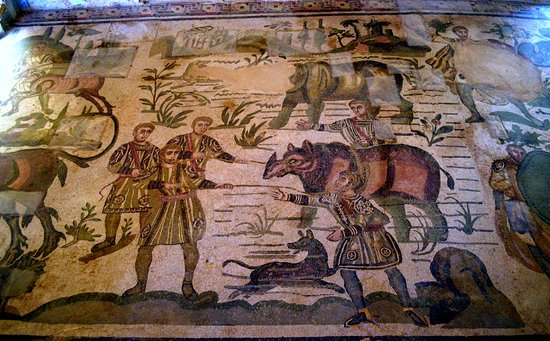 Villa Romana del Casale: Rinoceronte