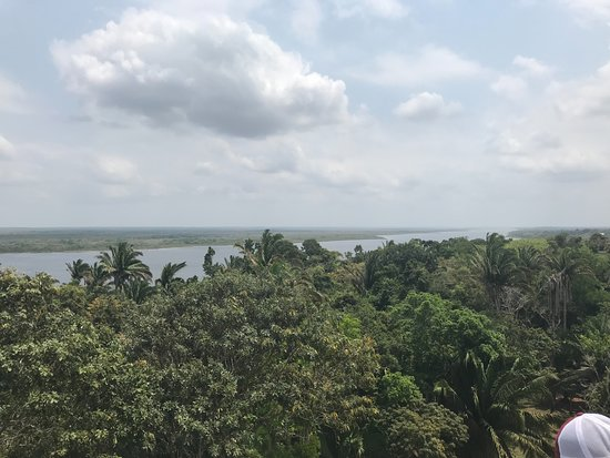 Distrito de Belice, Belice: The view from the top is worth the climb!