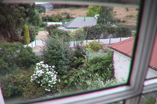 Bushy Park, ออสเตรเลีย: View from the window