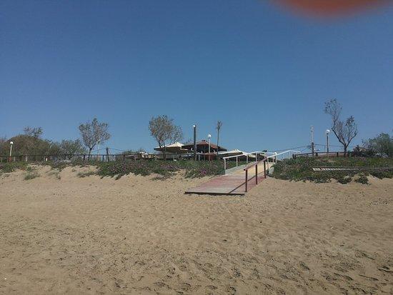 Ilia, Hellas: Garden and beach