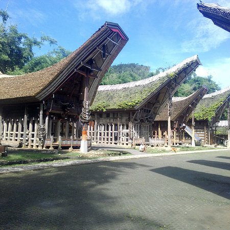 Sulawesi and Beyond Tour Guide: photo3.jpg