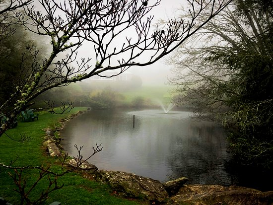 Mitchell's Lodge & Cottages, Inc.: Morning mist on the lake.