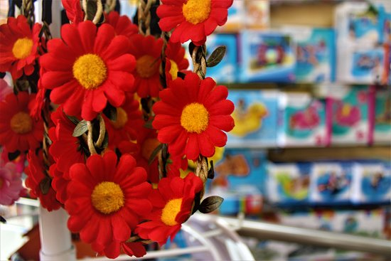 Burgau, Portugal : Flower bands