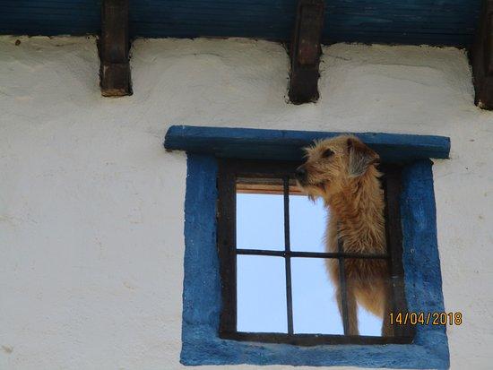 Casabermeja, Spain: Encantadores
