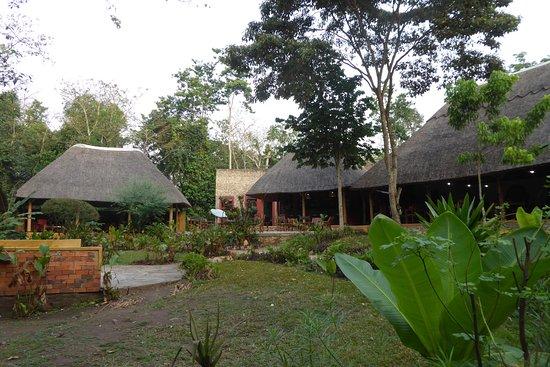 Kibale National Park 사진