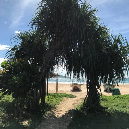 Talalla, Σρι Λάνκα: photo5.jpg