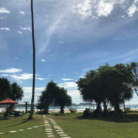 Talalla, Σρι Λάνκα: photo6.jpg