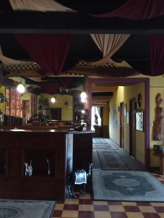 Hotel Casa Antigua: IMG_20180411_064344-992x1320_large.jpg