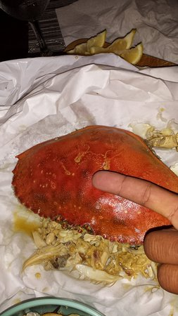 Crab Station at Fishermans Wharf : Crab Shell Left after Eating!