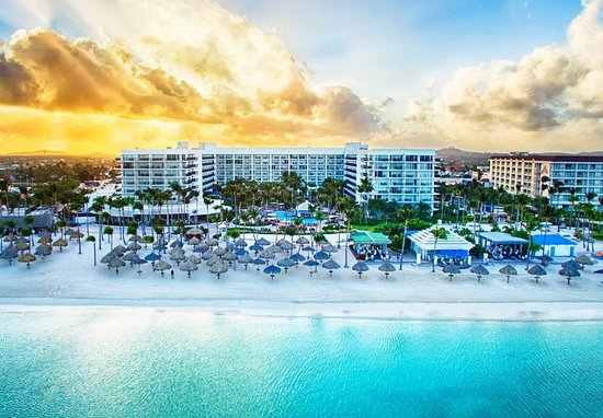 Can I Rate It Higher Than Excellent Review Of Aruba Marriott Resort Stellaris Palm Eagle Beach Tripadvisor