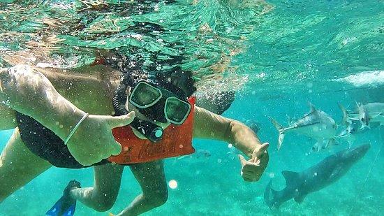 Belize Cayes, Belize: Cayos de Belice