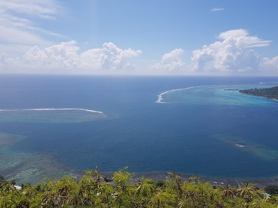 ATV Moorea Tours : 20180417_113009_large.jpg