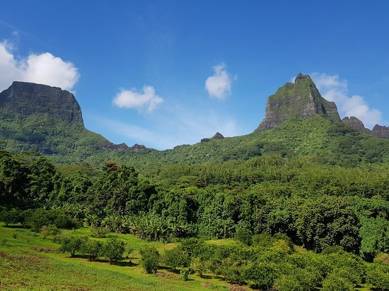 ATV Moorea Tours : 20180417_092623_large.jpg