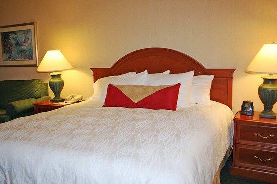 Windsor, Коннектикут: Guest room