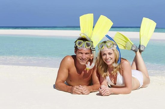 Snorkel Gear and Beach Rentals