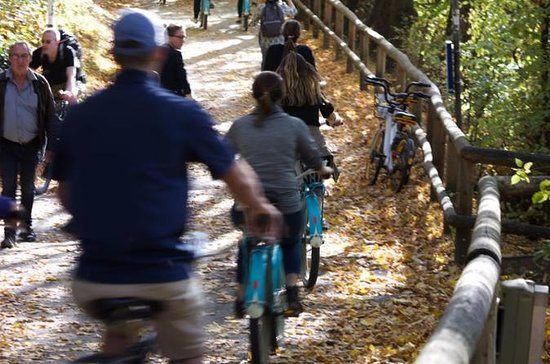 The Early Bird Bike Tour