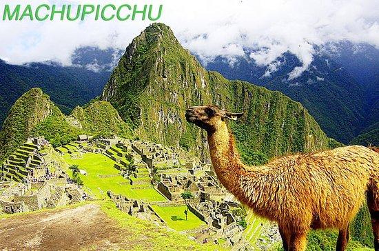 Excursión de un día a Machupicchu desde...