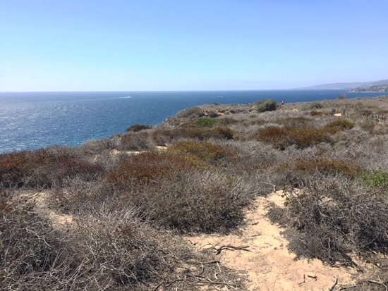 Dana Point, CA: View from Ridge