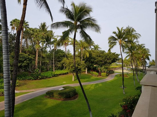 Fairmont Orchid, Hawaii: 20180401_075127_large.jpg