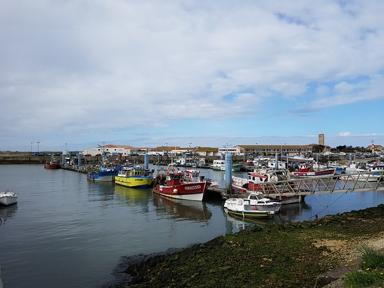 Le Port de la Cotinière Photo