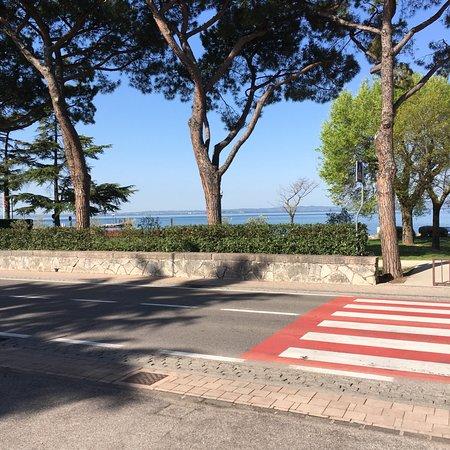 Cisano, Italie : photo0.jpg