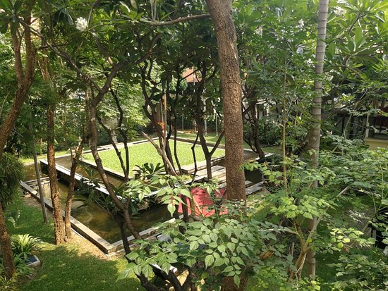 Bodhi Serene Hotel: IMG_20180415_143459_large.jpg