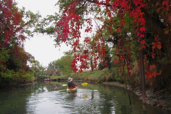 Venice Kayak: S.Erasmo in autumn