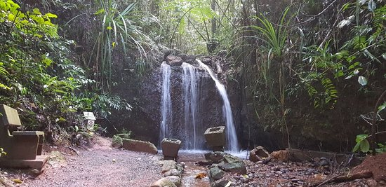 Mena Creek, Australia: 20180417_164936_large.jpg