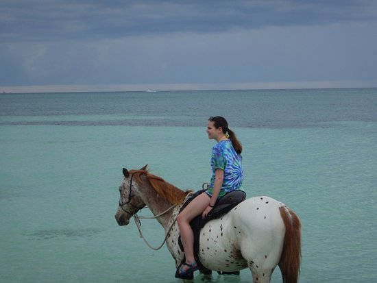 Pinetree Stables: crystal clear beautiful beach