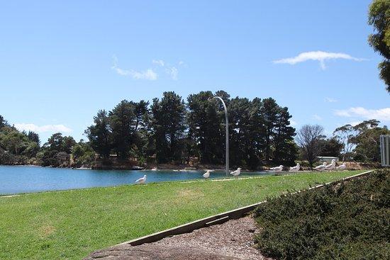 Wynyard, ออสเตรเลีย: The lake