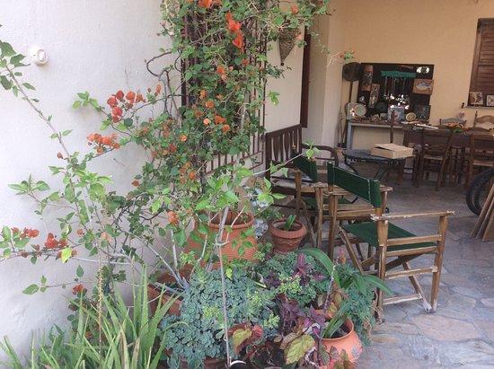 Ξυροκάμπι, Ελλάδα: Studio/courtyard in Xirokambi, Laconia.