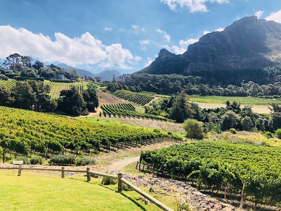 Constantia Glen Winery張圖片