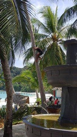 Pulau Lang Tengah, Malasia: IMG_20180408_110133_large.jpg