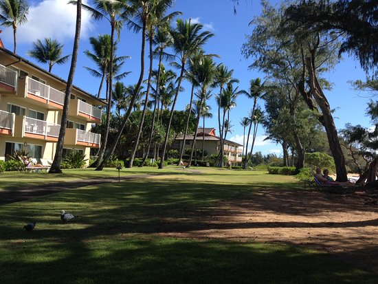 Kauai Coast Resort at the Beachboy: Shoreline in front of resort