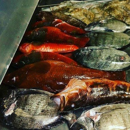 Santa Cruz Da Graciosa, Portekiz: Peixe fresco
