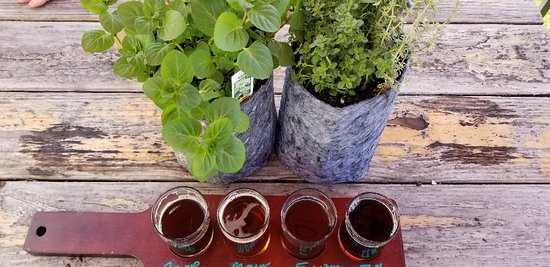 West Sacramento, CA: A couple of fun activities, Succs & Sudds and Herb's the Word and beer!