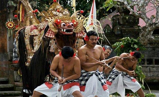 Bali Tourist Driver