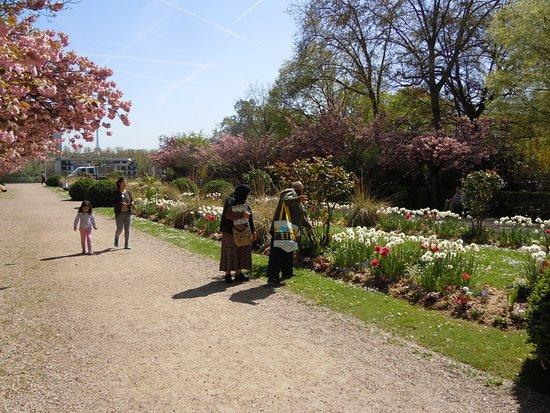 Parc de Bécon: Une allée du parc