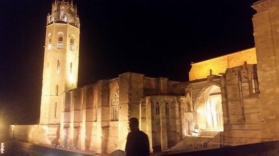 Turo Seu Vella: Catedral Seu Vella