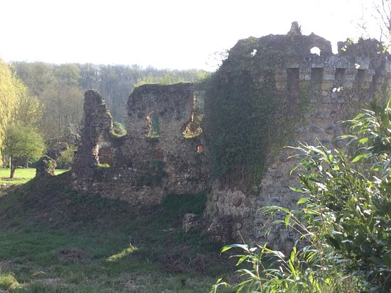 Chateau-la-Valliere, Frankreich: Remains of Chateau de Vaujours