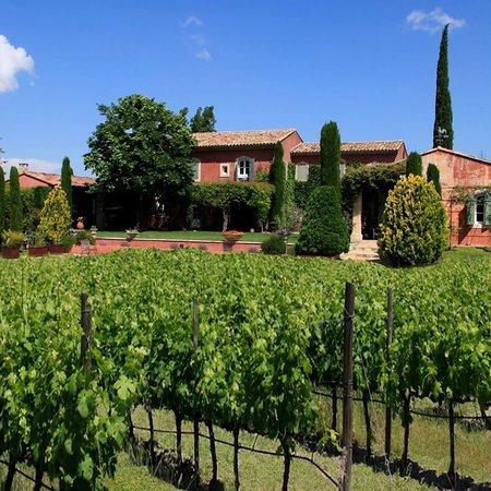 Roussillon, Frankreich: Vignoble Chasson Château Blanc