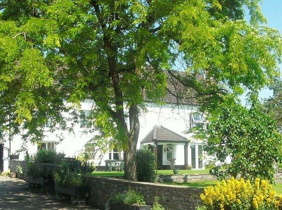Bryndu Farm house and garden