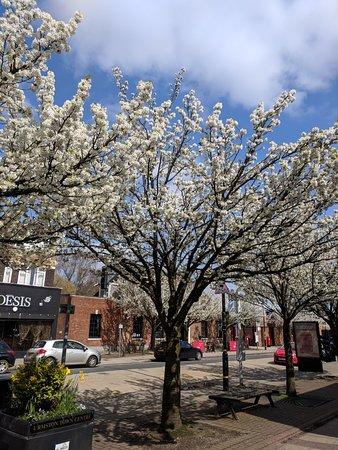 Urmston, UK: IMG_20180414_133105_large.jpg