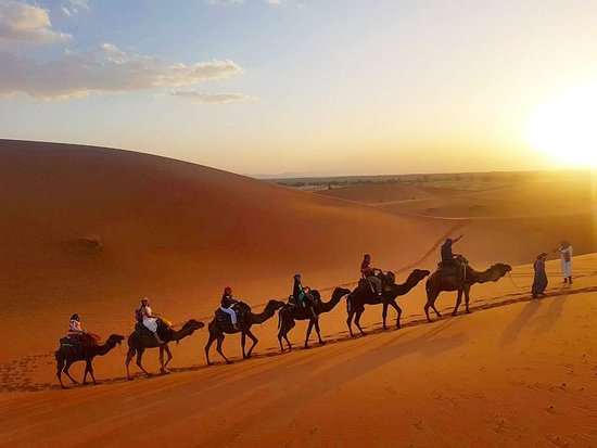 ‪Sahara Holiday Tours‬