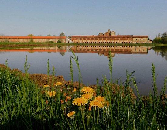 Castello  di Valeggio e le risaie , uno spettacolo da non perdere