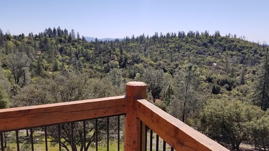Murphys, CA: View from Wimeblon Room