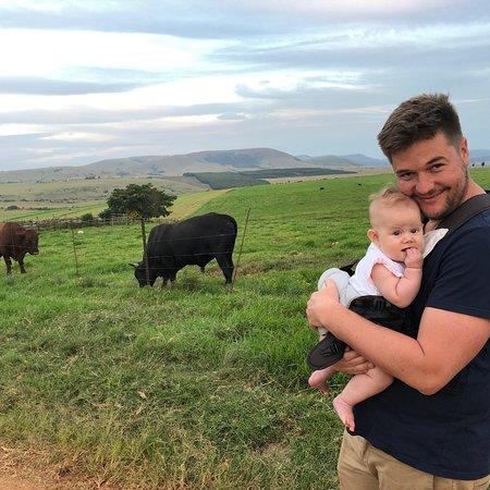 Piet Retief, Güney Afrika: photo2.jpg