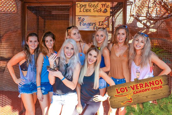 Los Veranos Canopy Tour: Animal Sanctuary